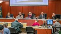 Clark County Council (06-02-20)